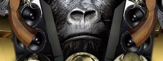 "Gorillas ""Gold fever"""