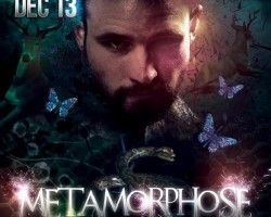 "Gorillas ""Metamorphose"" 