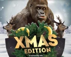 Gorillas Xmas Edition Verona | 17.12.2016